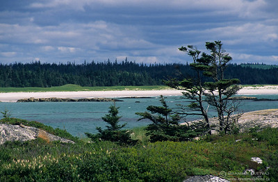 Sandy beach at Kejimkujik National Park, Nova Scotia