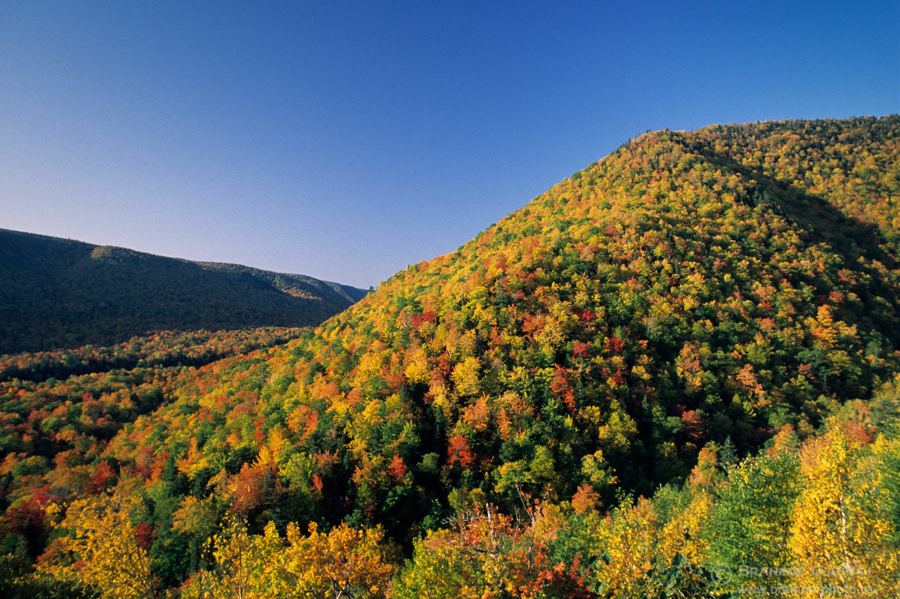 Fall colours in North Aspy Valley. Cape Breton Highlands National Park