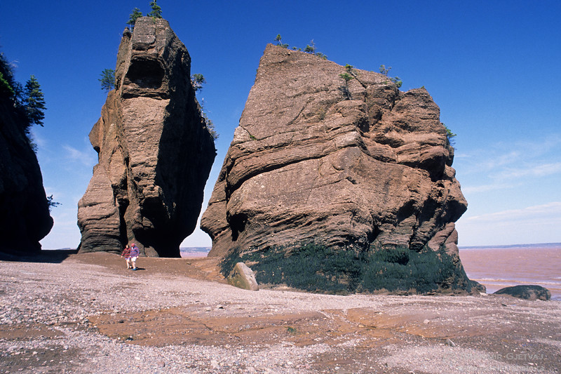 Couple on a beach at low tide. Hopewell Rocks, New Brunswick