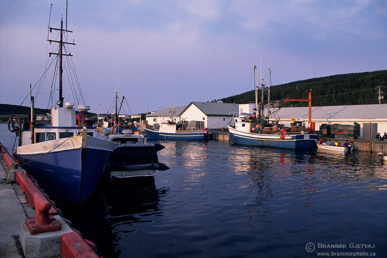Snow-crab fishing boats in St. Lewis harbour, Labrador