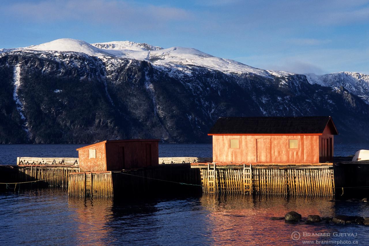 Red fishing shacks. Norris Point, Newfoundland