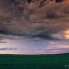 Wheat field and clouds at sunset, Saskatchewan