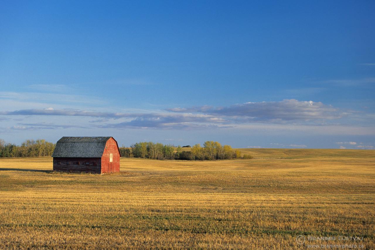 Red barn in a stubble field, Wakaw, Saskatchewan