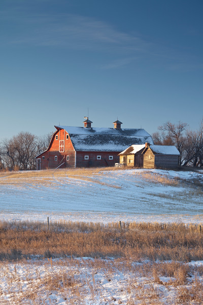 Red barn in a snow-covered field, Struan