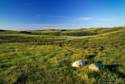 Prairie at sunrise. Cypress Hills, Saskatchewan