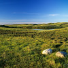 Prairie at sunrise. Cypress Hills, Saskatchewan