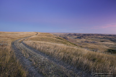 Winding trail through prairie at dawn, Grasslands National Park