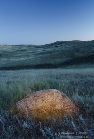 Granite boulder in prairie at Fairview PFRA community pasture, Saskatchewan
