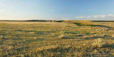 Native prairie at Govenlock PFRA community pasture, Saskatchewan