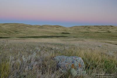Native prairie at Fairview PFRA community pasture, Saskatchewan