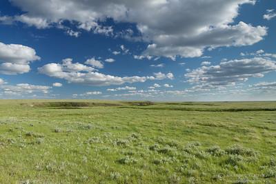 Native Prairie at Battle Creek PFRA community pasture, Saskatchewan