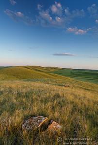 Boulder in prairie at Fairview PFRA community pasture. Near Fiske, Saskatchewan