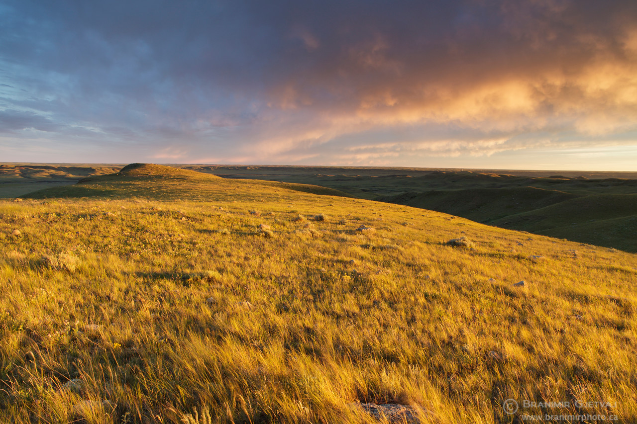 Dramatic sunset over prairie in Frenchman River Valley. Val Marie PFRA pasture, Saskatchewan