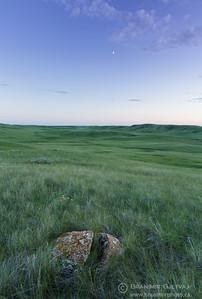 Boulder in native prairie at Fairview PFRA community pasture. Near Fiske, Saskatchewan