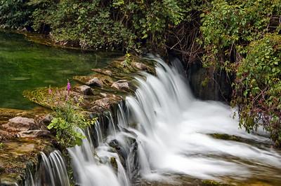 Dufferin Islands Park | Ontario, CA - 0157