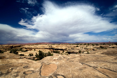 Canyonlands National Park | Utah | US - 0010