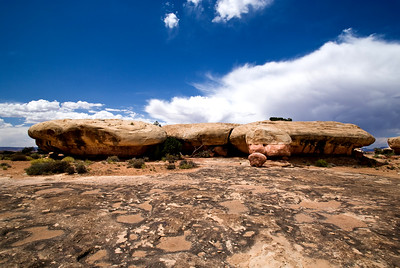 Canyonlands National Park | Utah | US - 0014