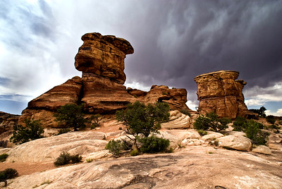 Canyonlands National Park | Utah | US - 0012