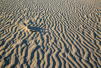 Death Valley sand dunes close up