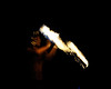 Walt Disney World, Pixelmania 2010 1/ 20s, at f/16 || E.Comp:-2 / 6 || 200mm || WB: AUTO 0. || ISO: 3200 || Tone:  || Sharp:  || Camera: NIKON D700on: 2010:12:05 13:22:58