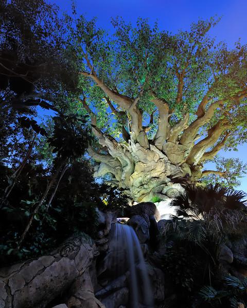 Walt Disney World, Pixelmania 2010 10s, at f/8 || E.Comp:-4 / 6 || 14mm || WB: AUTO 0. || ISO: 200 || Tone:  || Sharp:  || Camera: NIKON D700on: 2010:12:01 18:57:05