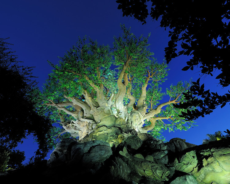 Walt Disney World, Pixelmania 2010 4s, at f/8 || E.Comp:-4 / 6 || 14mm || WB: AUTO 0. || ISO: 200 || Tone:  || Sharp:  || Camera: NIKON D700on: 2010:12:01 19:02:46