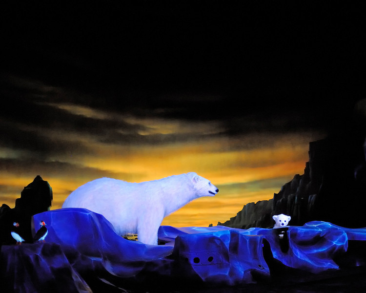 Walt Disney World 1/ 60s, at f/1.4 || E.Comp:0 || 50mm || WB: AUTO 0. || ISO: 6400 || Tone:  || Sharp:  || Camera: NIKON D700on: 2010:01:04 14:58:24