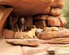 Walt Disney World 1/ 90s, at f/4.8    E.Comp:0    50mm    WB: CLOUDY 0.    ISO: 200    Tone:     Sharp:     Camera: NIKON D700on: 2010:01:08 11:56:23