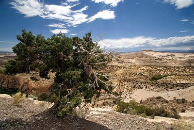 Escalante National Monument | Utah | US - 0004