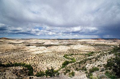 Escalante National Monument | Utah | US - 0009