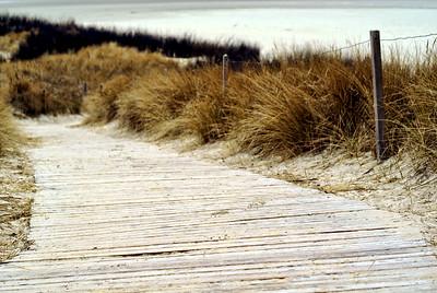 Der Strand | Spiekeroog, Germany - 0071