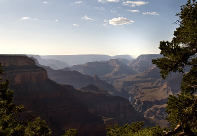 Grand Canyon National Park | Arizona | US - 0017