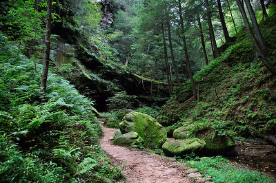Hocking Hills, OH | US - 0026