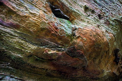 Cantwell Cliffs  | Hocking Hills, OH | US - 0049