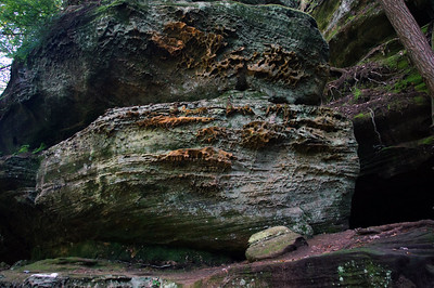 Old Man's Cave | Hocking Hills, OH | US - 0016