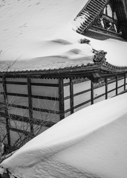 Bitterly Cold 2155 Yamanouchi Nagano