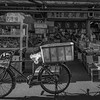 Tsukiji Fish - Bicycle Delivery 2552