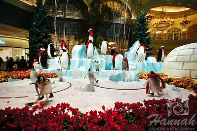 Bellagio Conservatory Holiday display 2011 Las Vegas, Nevada  © Copyright Hannah Pastrana Prieto