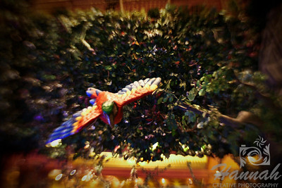 Interior decorations of wild animals found at the Rainforest Cafe inside MGM Grand Hotel and Casino in Las Vegas, Nevada Shot with the Lensbaby and Sweet 35 optic  © Copyright Hannah Pastrana Prieto