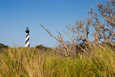 Cape Hatteras Lighthouse in North Carolina - Grasses in the foreground