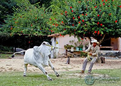 Rancho Las Prietas, Chiapas, Mexico