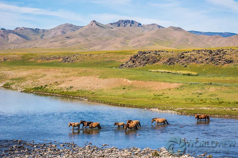 Road to Bat Olzii, Mongolia