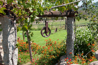 Vineyard Pulley