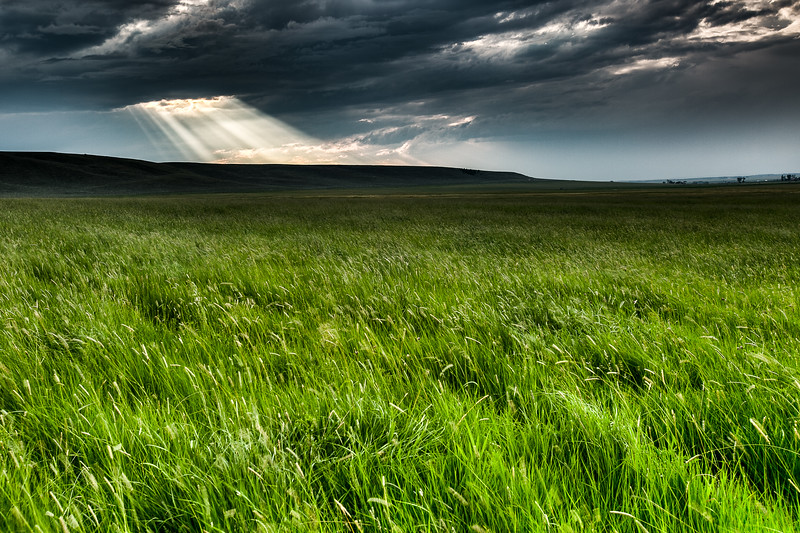 Momentary break in the clouds over a field near Avon, Montana