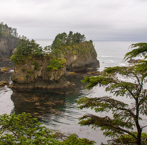 Near Cape Flattery view area