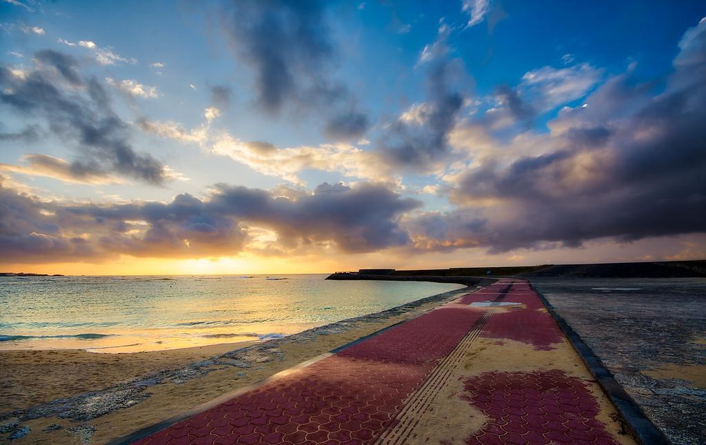 Along Tropical Beach's Path