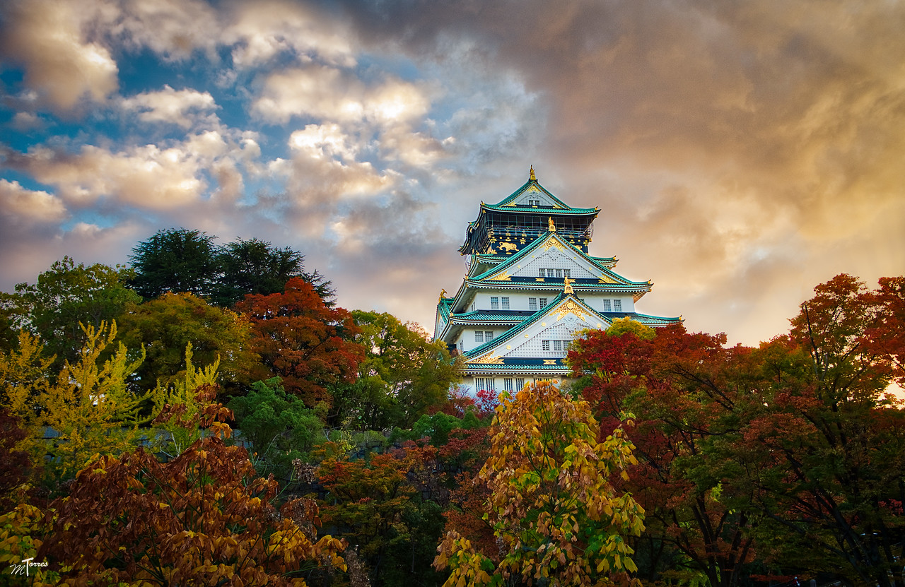 Osaka Castle Rises Above