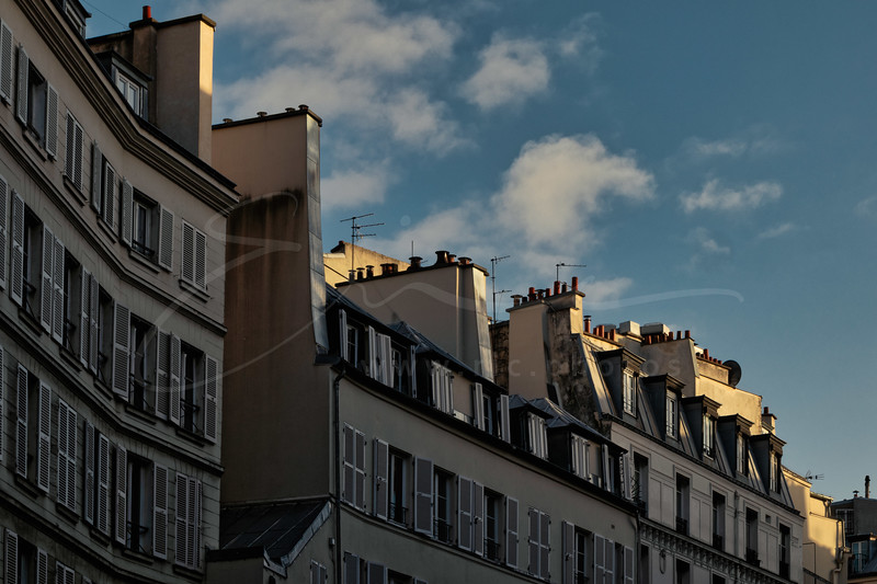 les toits   the roofs