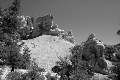 Red Canyon   Utah   US - 0006