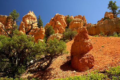 Red Canyon | Utah | US - 0007